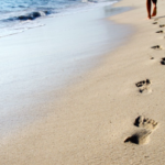 Barefoot Training: A Functional Trainers Journey